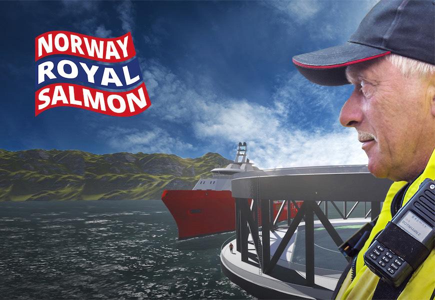 Regiondirektør Troms